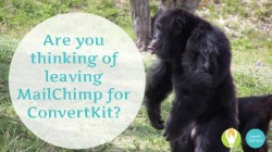 MailChimp Versus ConvertKit: Which Is Right for You?