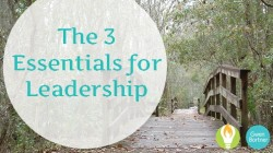 The 3 Essentials of Leadership