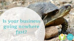 3 Steps to Creating Business Momentum